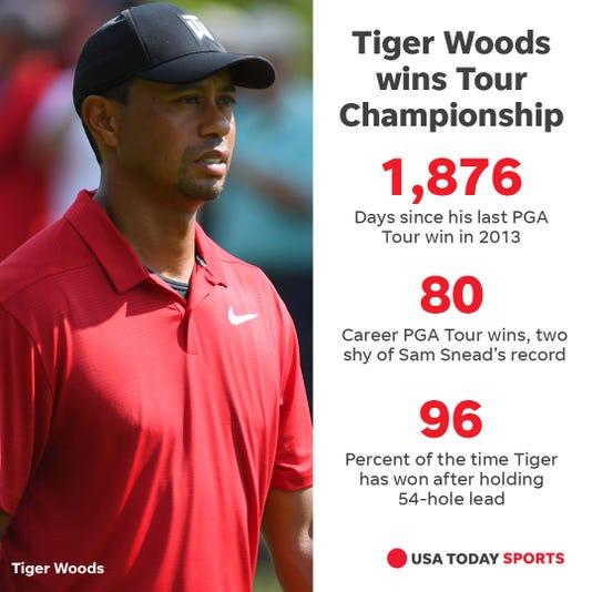 Tiger Winning Graphic
