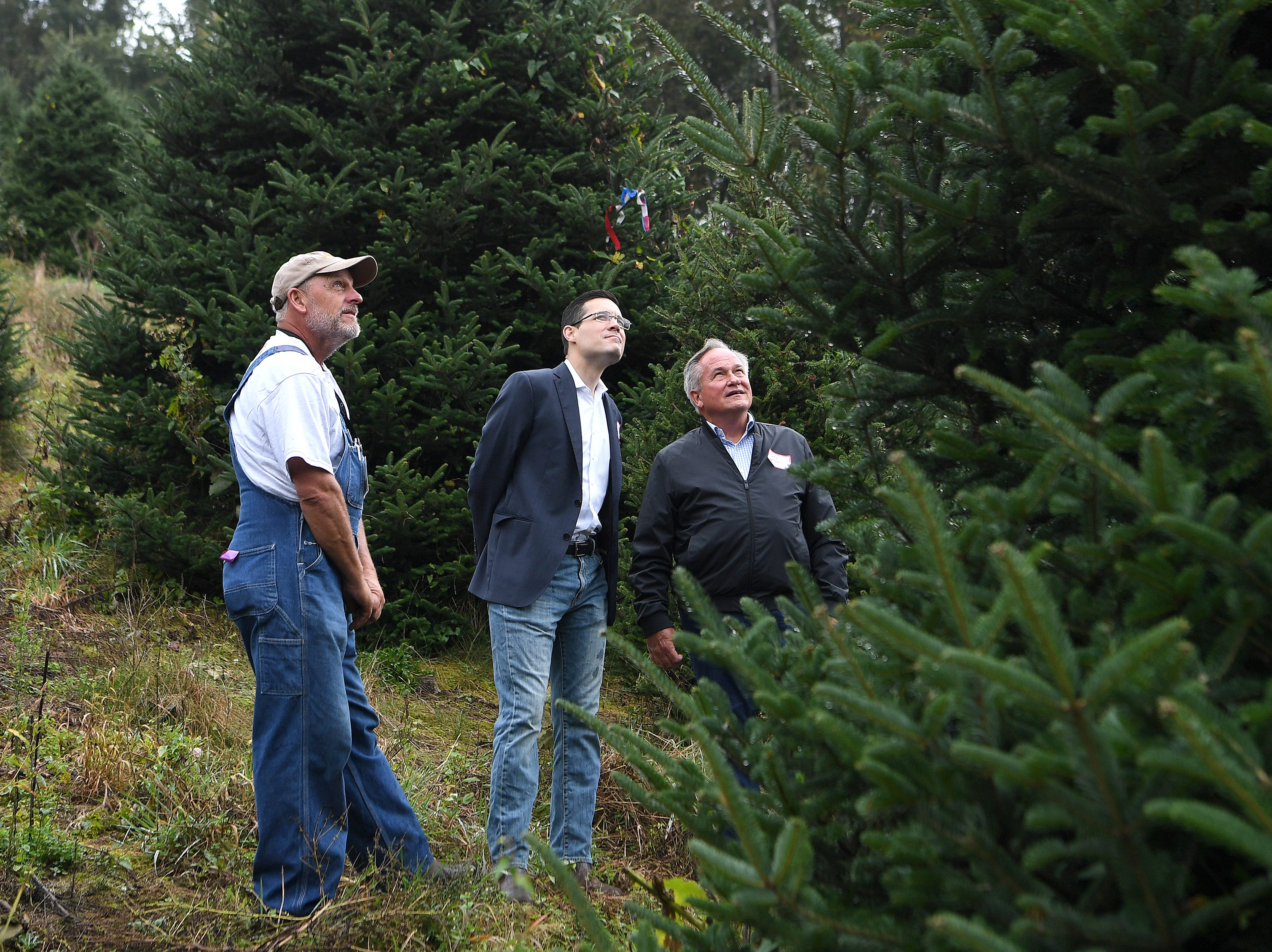 White House officials chief usher Timothy Harleth and superintendent of grounds Dale Haney pick out one of Mountain Top Fraser Fir Christmas tree farmer Larry Smith's trees to display in the Blue Room of the White House during an event at his Newland farm on Sept. 24, 2018.