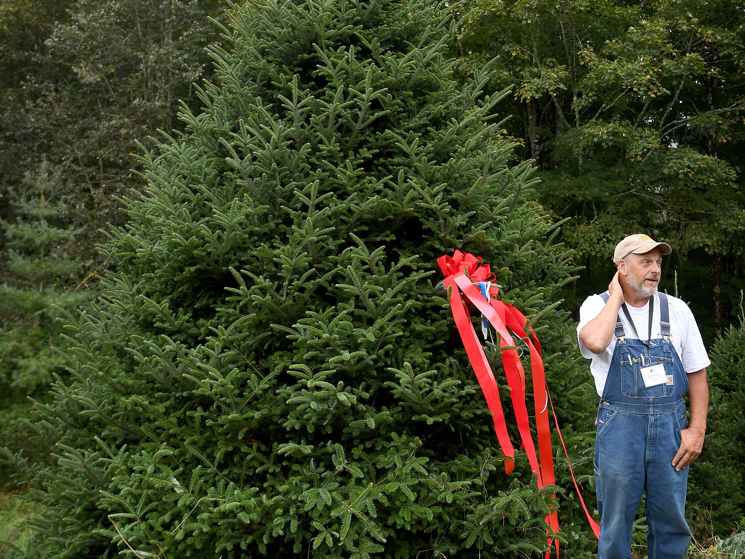 "Avery County Christmas tree grower Larry Smith stands with the tree chosen by White House officials to be displayed in the Blue Room this Christmas season during an event at his Newland farm on Sept. 24, 2018. ""It's sorta like winning the Super Bowl,"" Smith said. ""To represent the whole real Christmas tree industry is a real honor."""