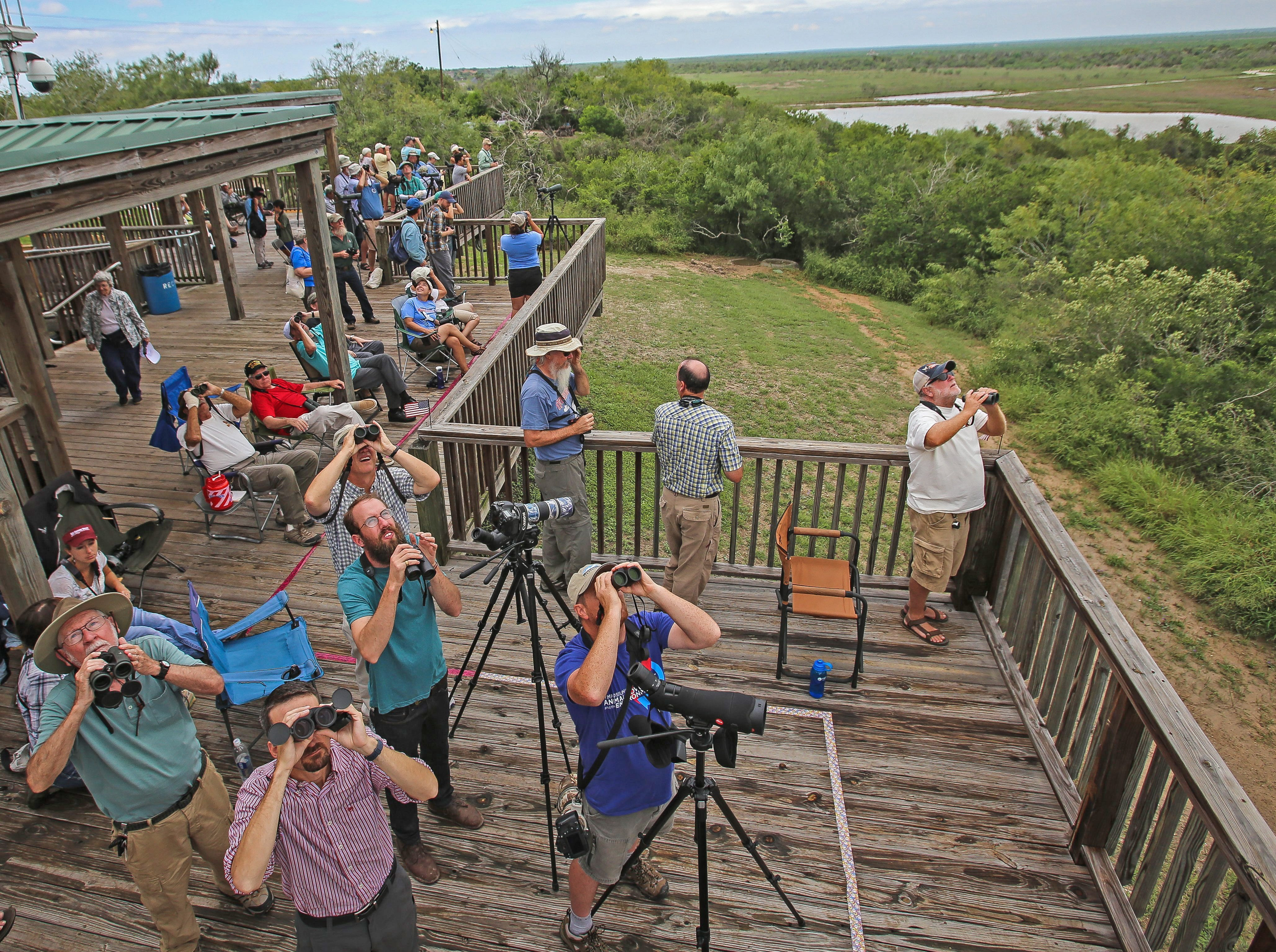 """Micah DeBenedetto/Special to the Caller-TimesBird watchers look to the skies during the 17th annual """"Celebration of Flight""""  event at Hazel Bazemore Park on Sunday, September 28, 2014.  The scientific study runs from August  15, 2014 to November 15, 2014 and includes three paid observers who turn data into Hawkwatch International to help determine health of each species of hawk as it migrates."""