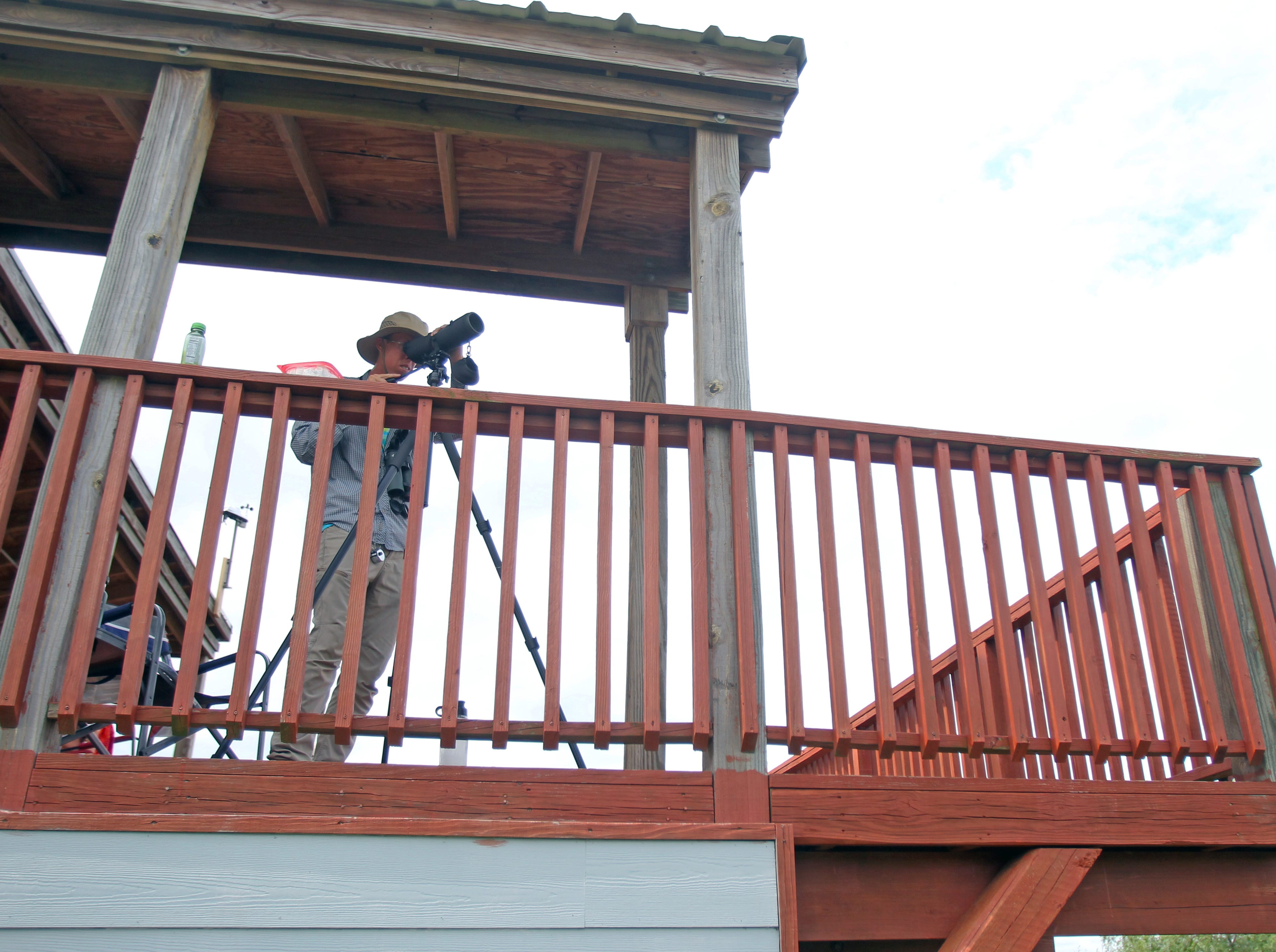 Volunteers come out each day from August through mid November to count and identify migrating hawks.