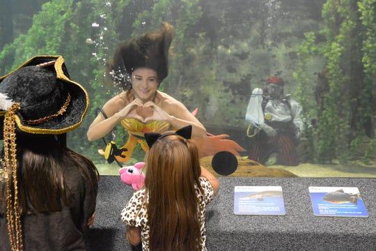 Mermaids return to Newport Aquarium through Oct. 14.