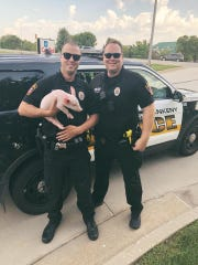 Ankeny Police Officer Kurt Weitl, right, scooped up the pig off the interstate and wanted to have his picture made with fellow officer Jamie Erie, who got to hold it.