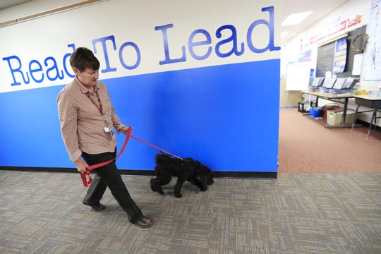 Principal Jolene Hussong walks down the hallways with Elsie, the new therapy dog-in-training at Luxemburg-Casco Intermediate school on Sept. 18 in Luxemburg.