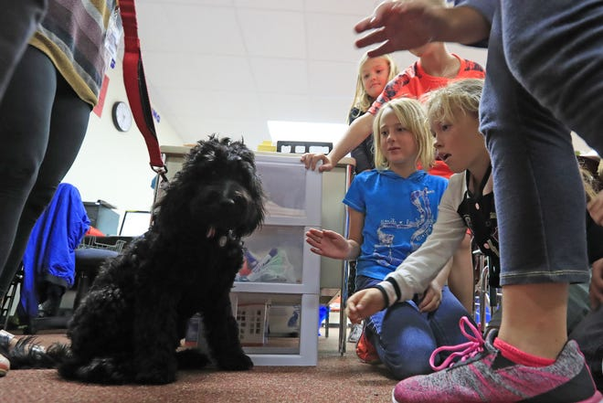 Students pet Elsie, the therapy dog-in-training at Luxemburg-Casco Intermediate school on Sept. 18 in Luxemburg.