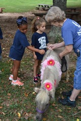 Tate's School students pet Honey, a miniature horse from S.T.A.R. (Shangri-La Therapeutic Academy of Riding).