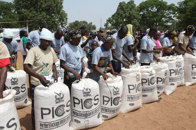 Founded by Purdue entomologist Larry Murdock, PICS was born in an effort to findan affordable, easy and safe means for farmers in African countries to store dried legumes like cowpeas, the release said, asstorage systems at the time were often expensive, unreliable or unsafe, due to the pesticide used inside devices.