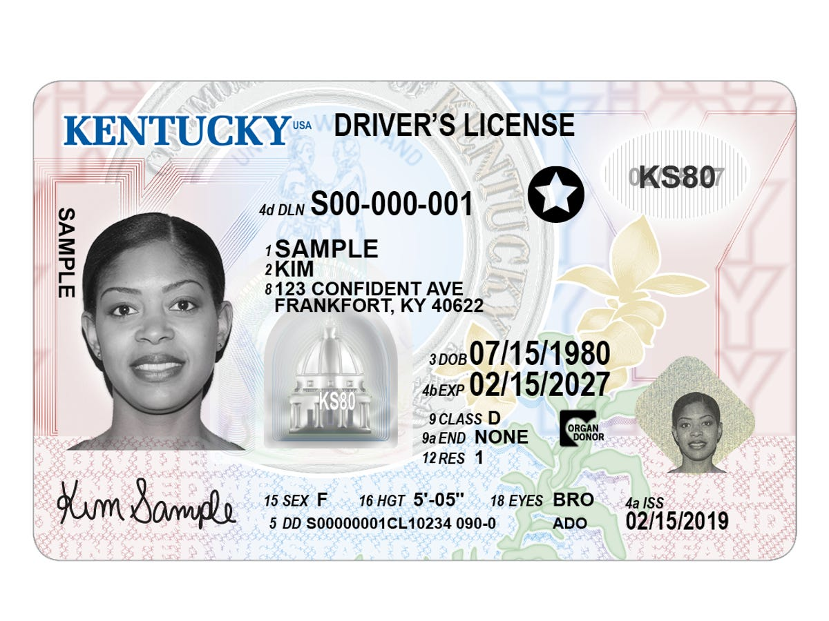 where to get a new license in louisville ky