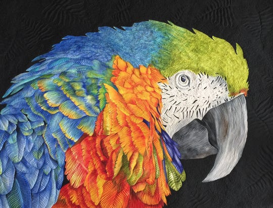 "A Crine quilt titled ""Mac Macaw."" Marco Island resident Deb Crine won first place in her category at a national quilting show of the American Quilter's Society."