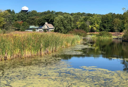Wetlands are part of the environment at the Aldo Leopold Nature Center in Monona.