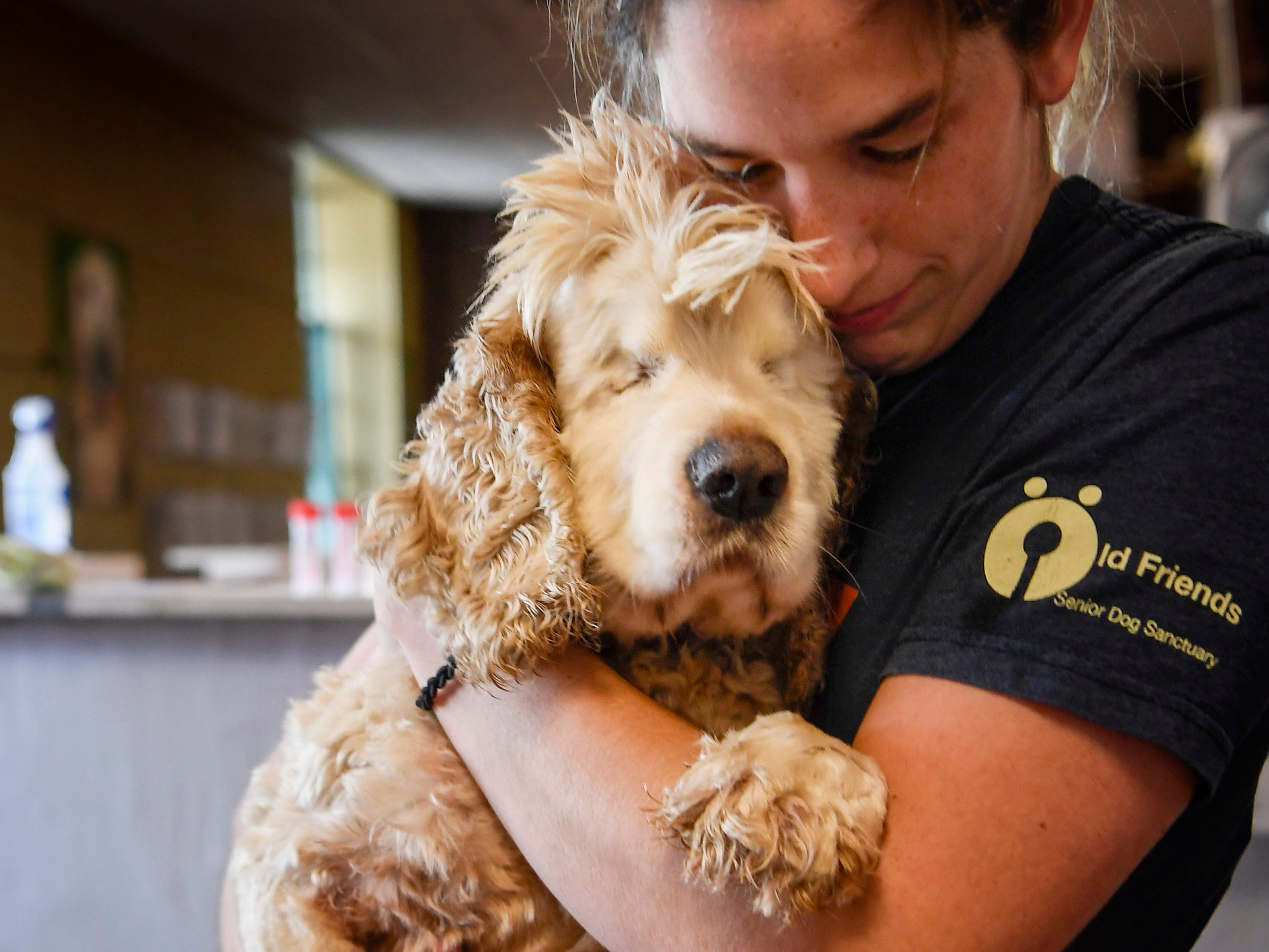 Kat Simpkins the dog care manager at the Old Friends Senior Dog Sanctuary in Mount Juliet loves on Mack, Tenn., Monday, Sept. 24, 2018.