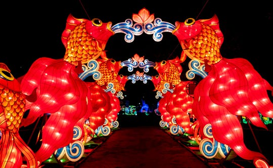 Dragon Lights Albuquerque will debut at EXPO New Mexico in Albuquerque on Oct. 5 and run through Dec. 2.