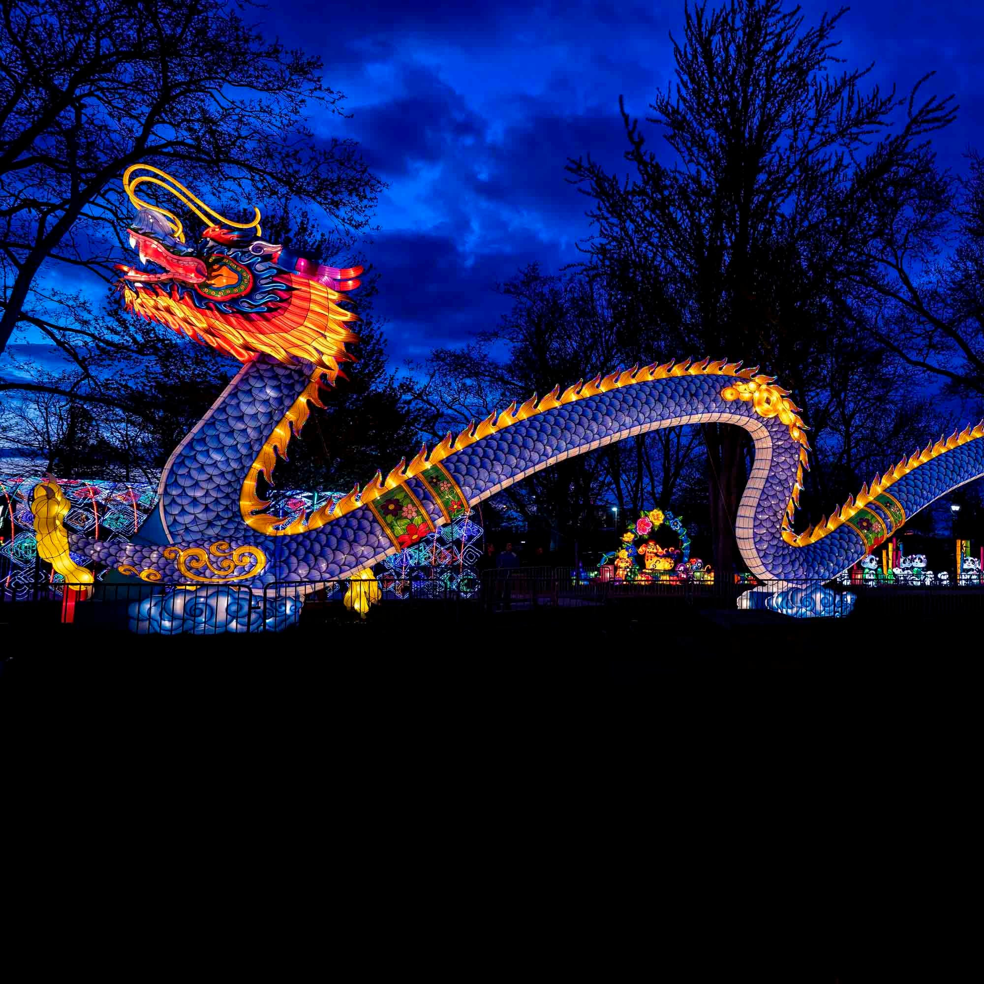 Chinese cultural festival Dragon Lights Albuquerque debuts in New Mexico Oct. 5