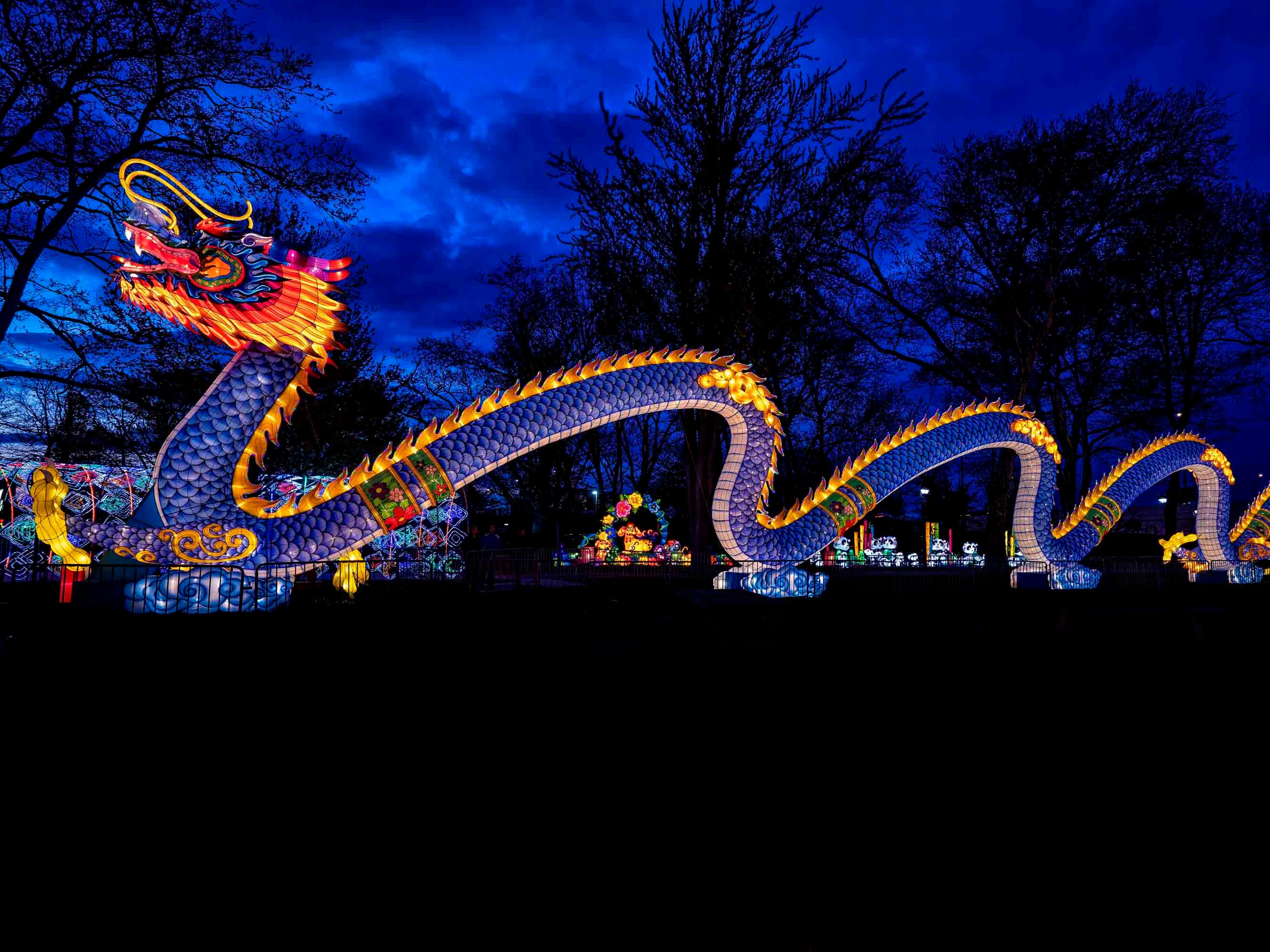 Dragon Lights Albuquerque, a Chinese cultural festival, will feature an enormous 40-foot-long dragon lantern.