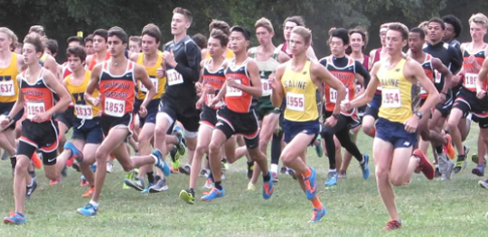 The Northville boys cross country team gets off the starting line in the Jackson Invitational at Ella Sharp Park.