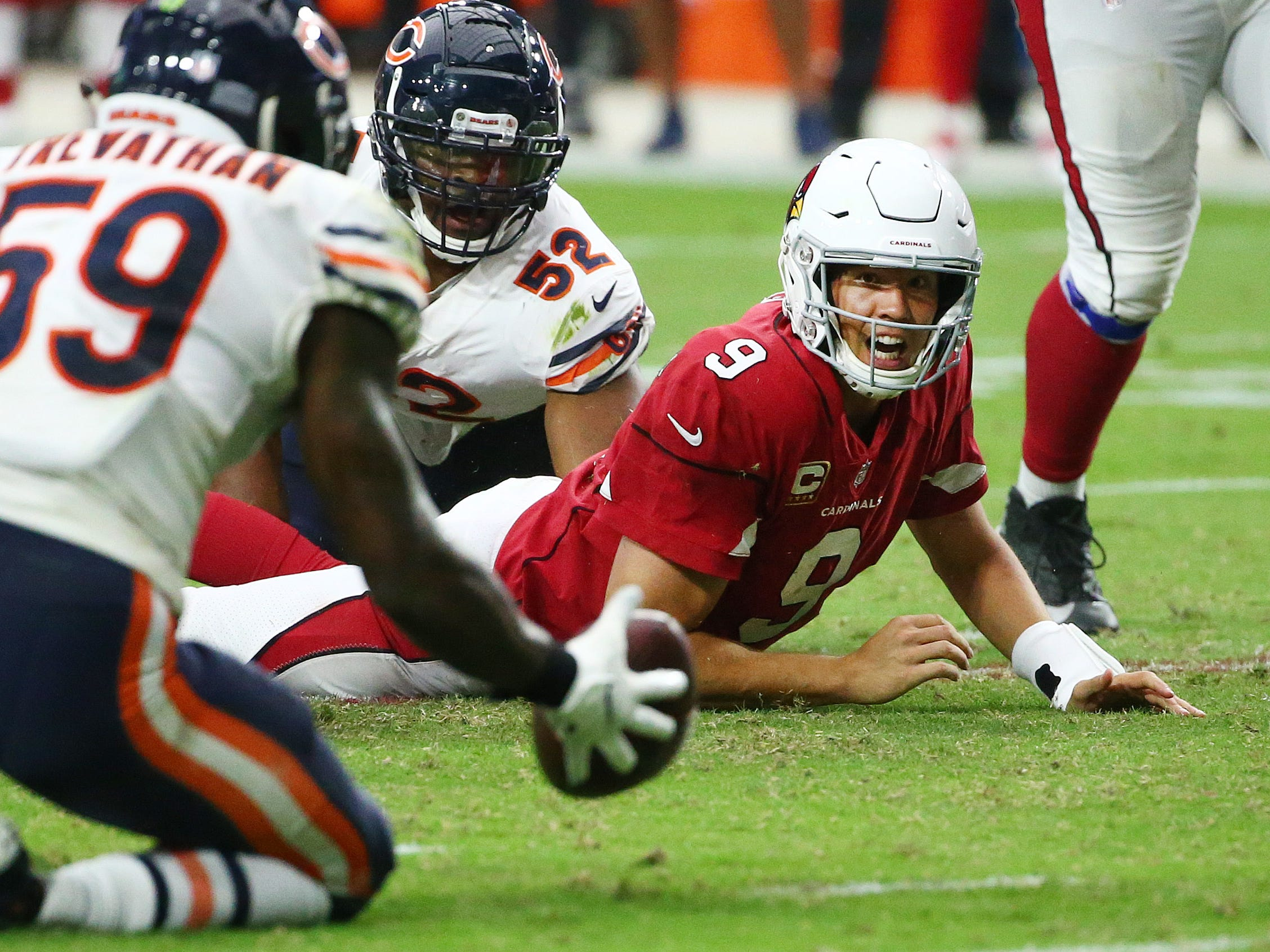Arizona Cardinals quarterback Sam Bradford watches his fumble roll into the hands of Chicago Bears linebacker Danny Trevathan in the second half at State Farm Stadium in Glendale, Ariz.
