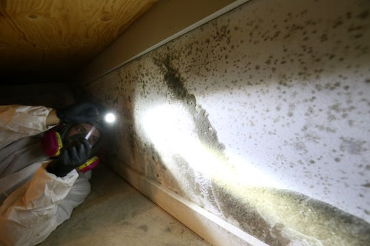 Expediant Environmental Solutions head foreman Mike Darling uses his flashlight to show the mold growth along a wall in a home in Hopewell Junction on Sept. 24, 2018.