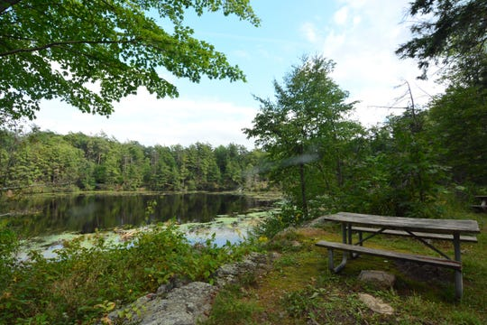 Pelton Pond is more of a casual stroll than a hike.