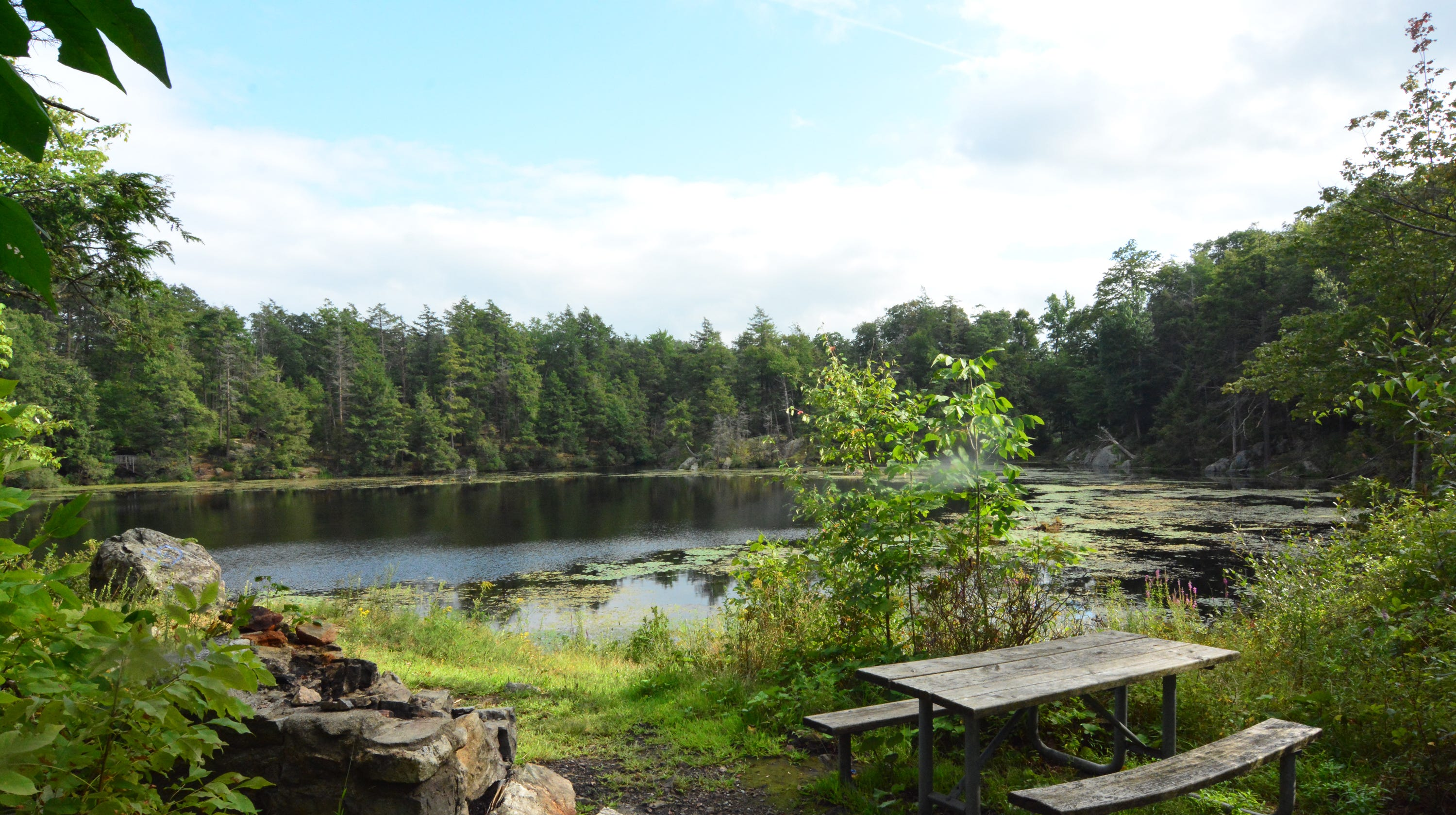 Pelton Pond in Hopewell Junction is a pleasant spot to picnic.