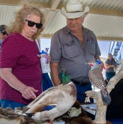 Visitors were able to view numerous educational displays including stuffed, mounted wildlife native to the area.