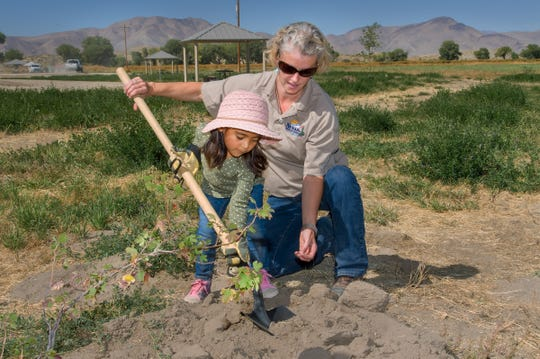 Holly Holwager, a safety representative with Nevada State Parks, helps Paola Hernandez, 4, of Yerington, plant a tree at one of the campsites.