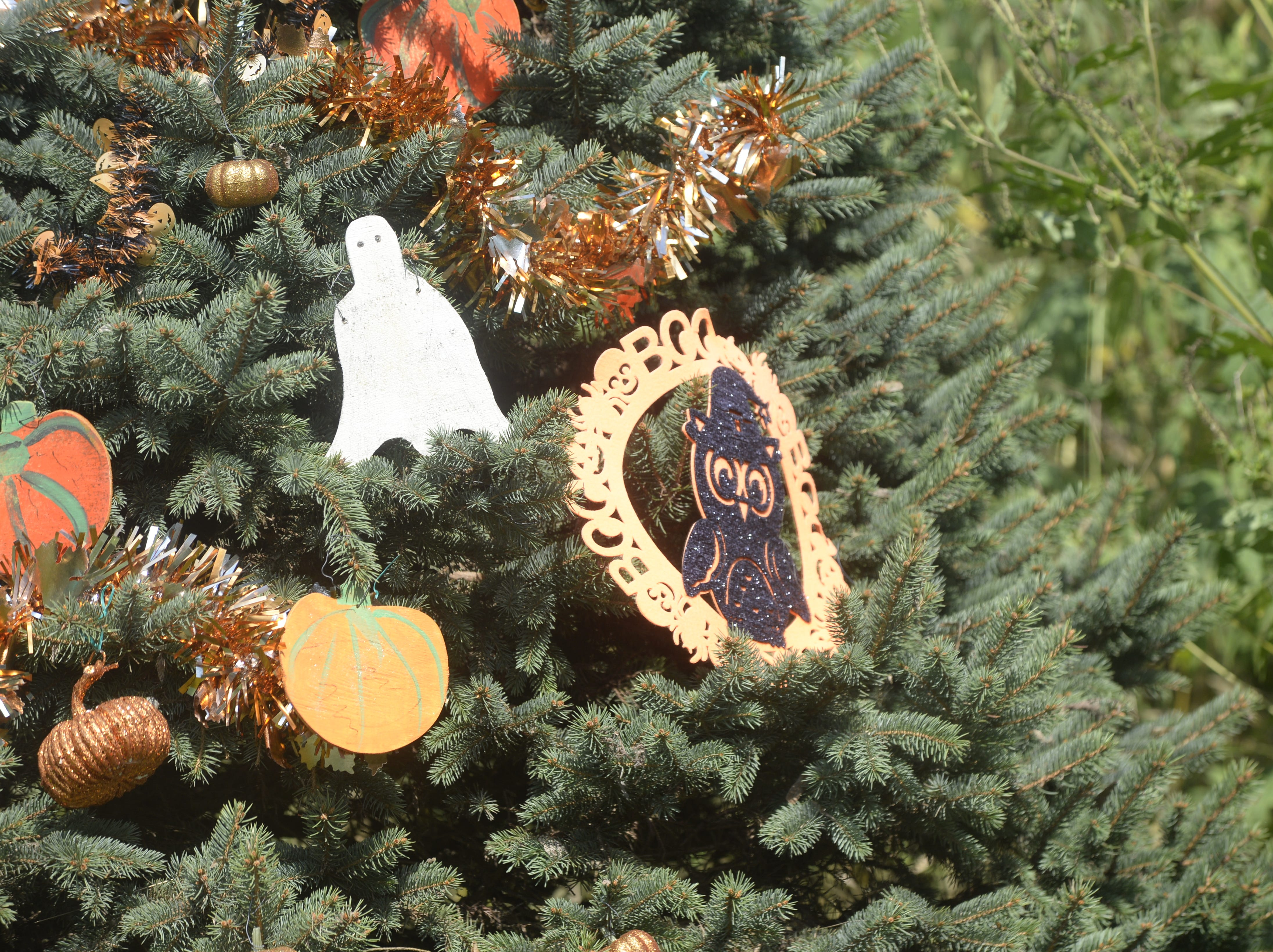Holiday-trimmed tree has become a Richmond family's tradition