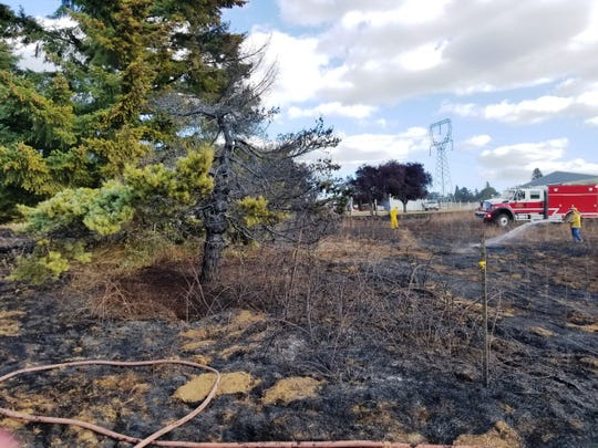 A homeowner trying to burn out a yellow jacket nest set off a grass fire east of Silverton.