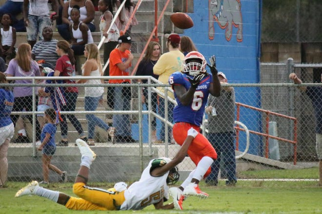 Taylor County receiver Zoe Roberts hauls in a touchdown catch against Ocala Forest.