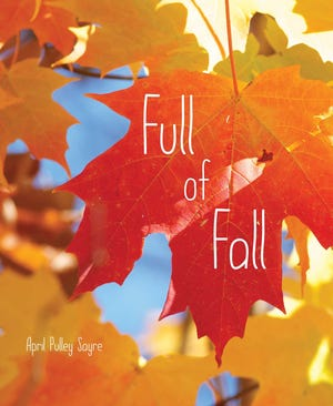 """""""Full of Fall"""" by April Pulley Sayre"""