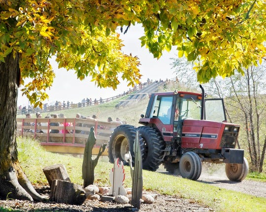 An autumnal scene from Center Grove Orchard.