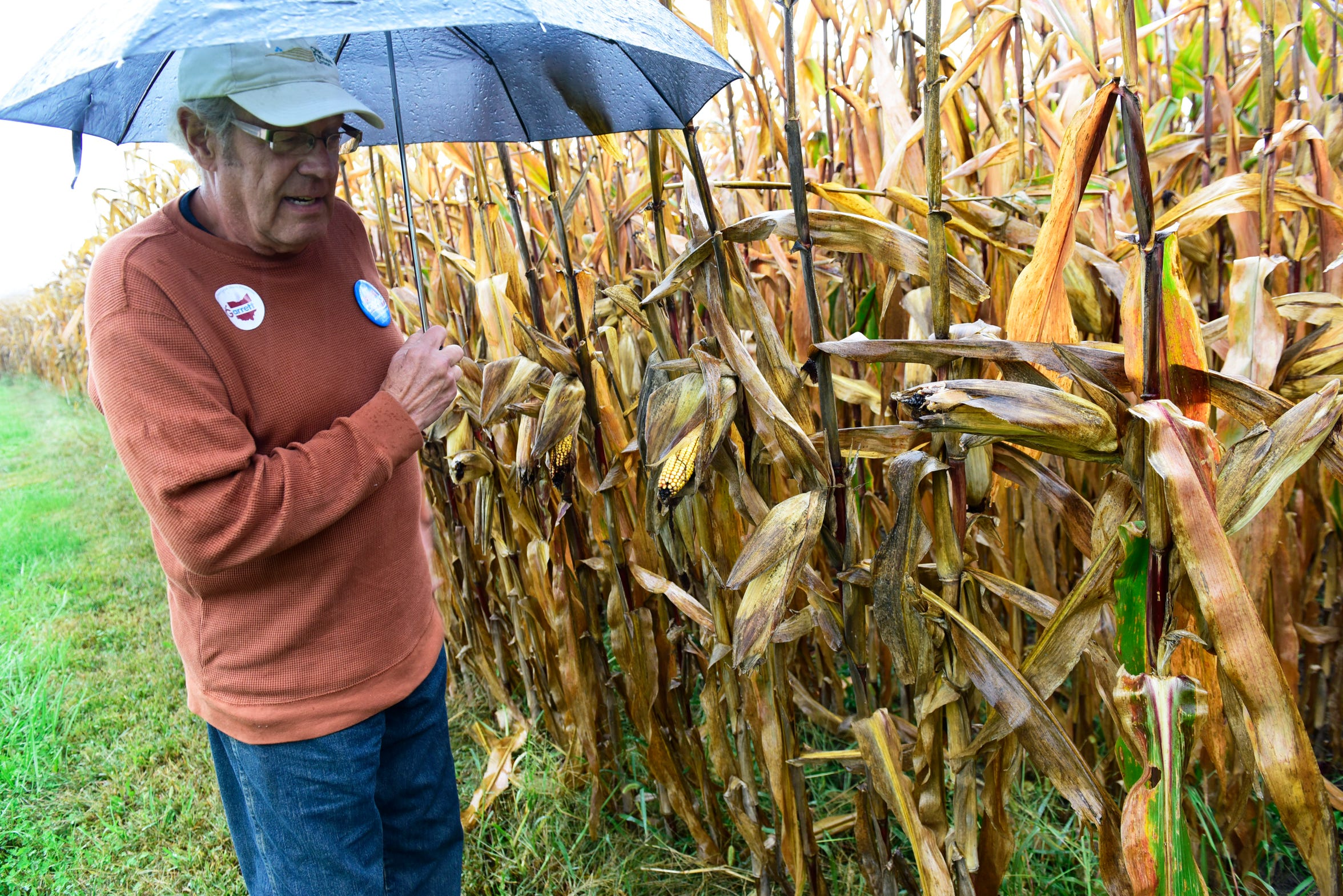 Soybean and corn farmer Roger Wise of Ballville Township said prices have fallen well below the cost of production for farmers.