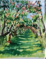 Mango grove painted by Pine Island artist Mel Meo