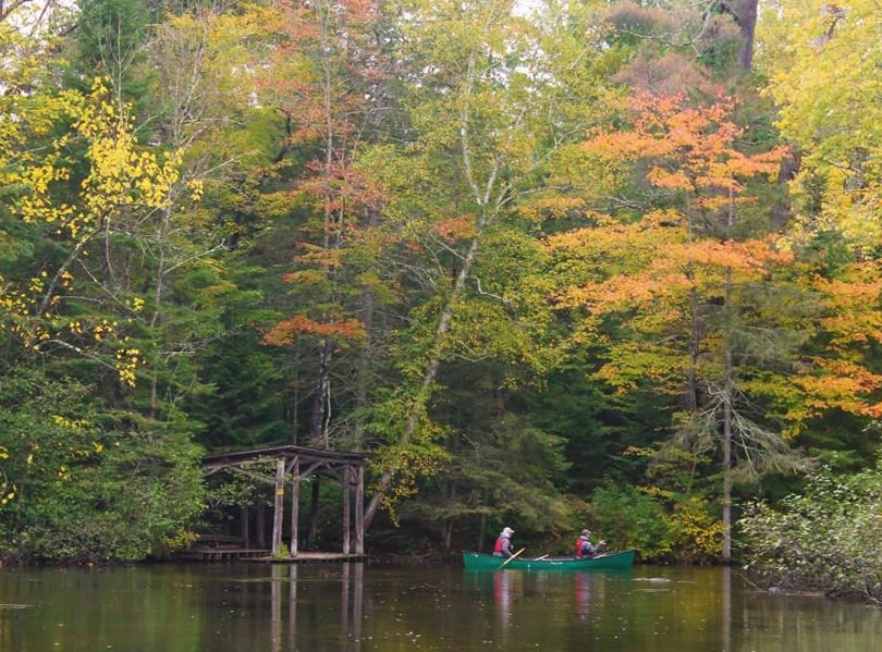 Wisconsin fall colors halfway to peak in parts of northwoods   Manitowoc outdoors news