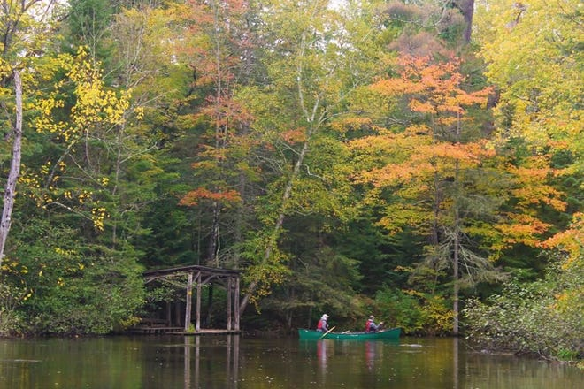 These were the colors at the Brule River State Forest as of Sept. 13.
