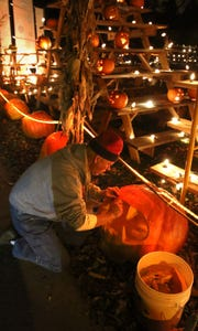 Phil Stevens of Shorewood works on carving one of the monster pumpkins at Old School House Park for the 2015 Great Pumpkin Festival.