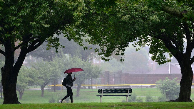 A woman uses an umbrella to shield herself form the rain as she walks through Main Memorial Park in Clifton  Tuesday morning on September 25, 2018.