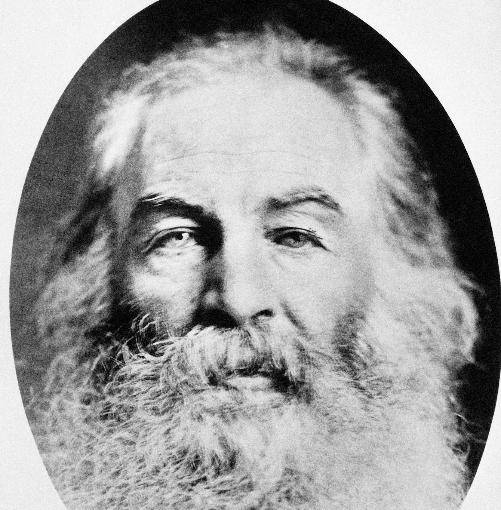 Poem in Your Pocket Day: 'Song of Myself' (Verse 52) by Walt Whitman