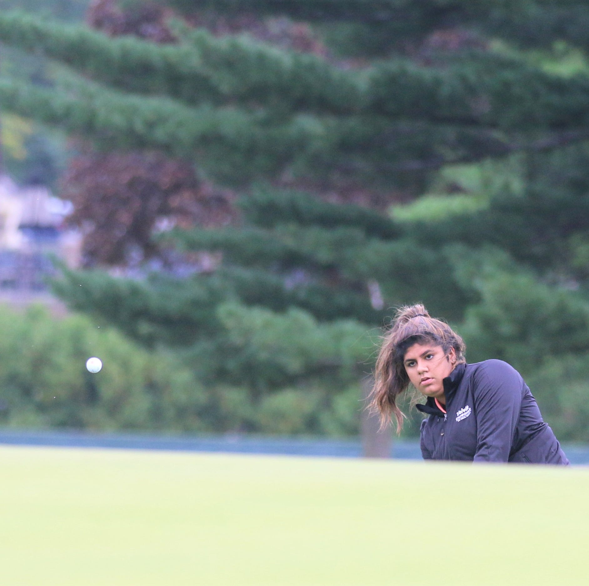 Gill leads way as No. 1 Northville girls golfers earn eighth tourney title
