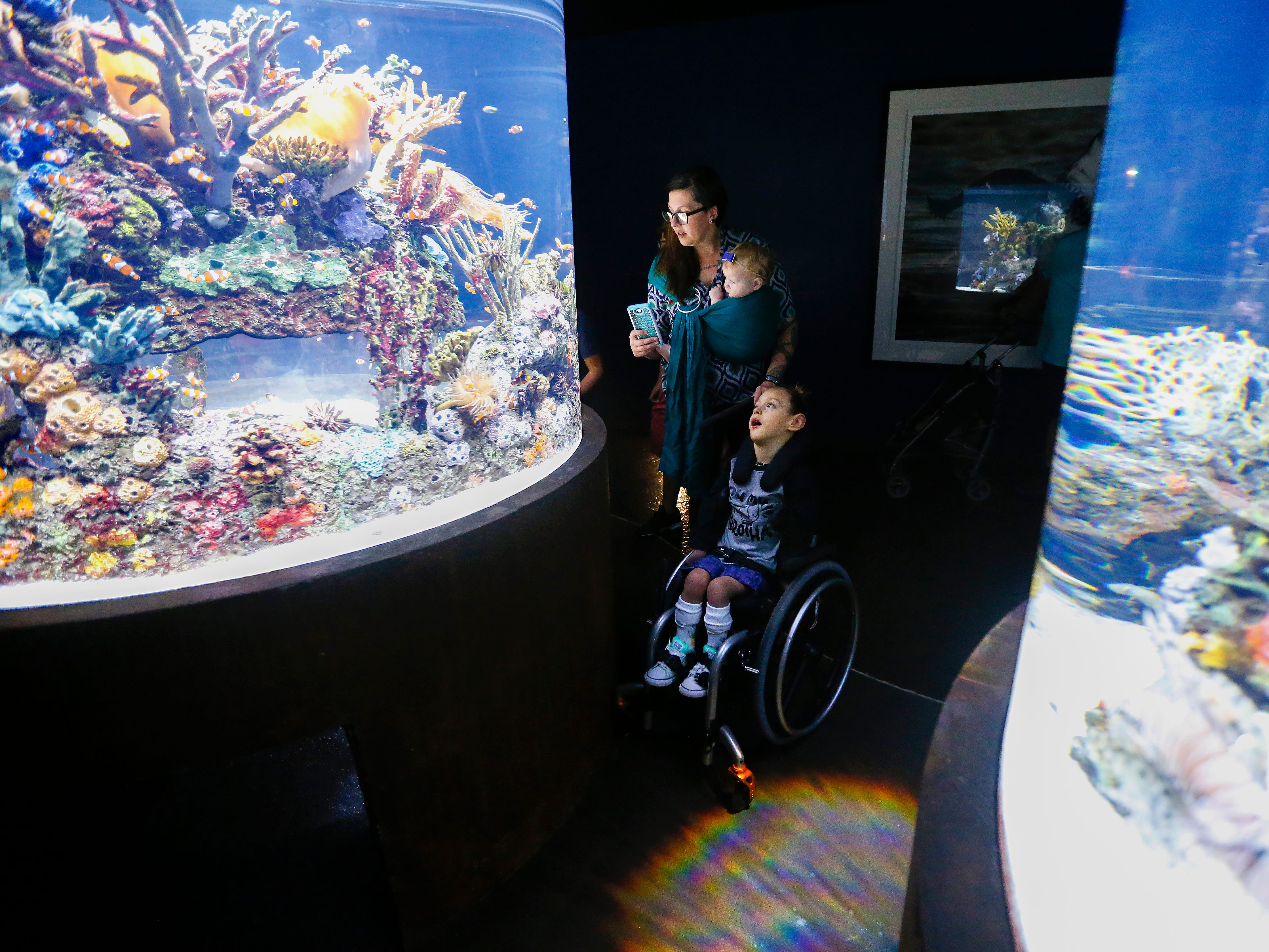 Ayden Markum, 5, looks at the clown fish at the Wonder's of Wildlife Aquarium along with his mom Ashley Markum and sister Letty Markum, 7-months, on Wednesday, Aug. 22, 2018.