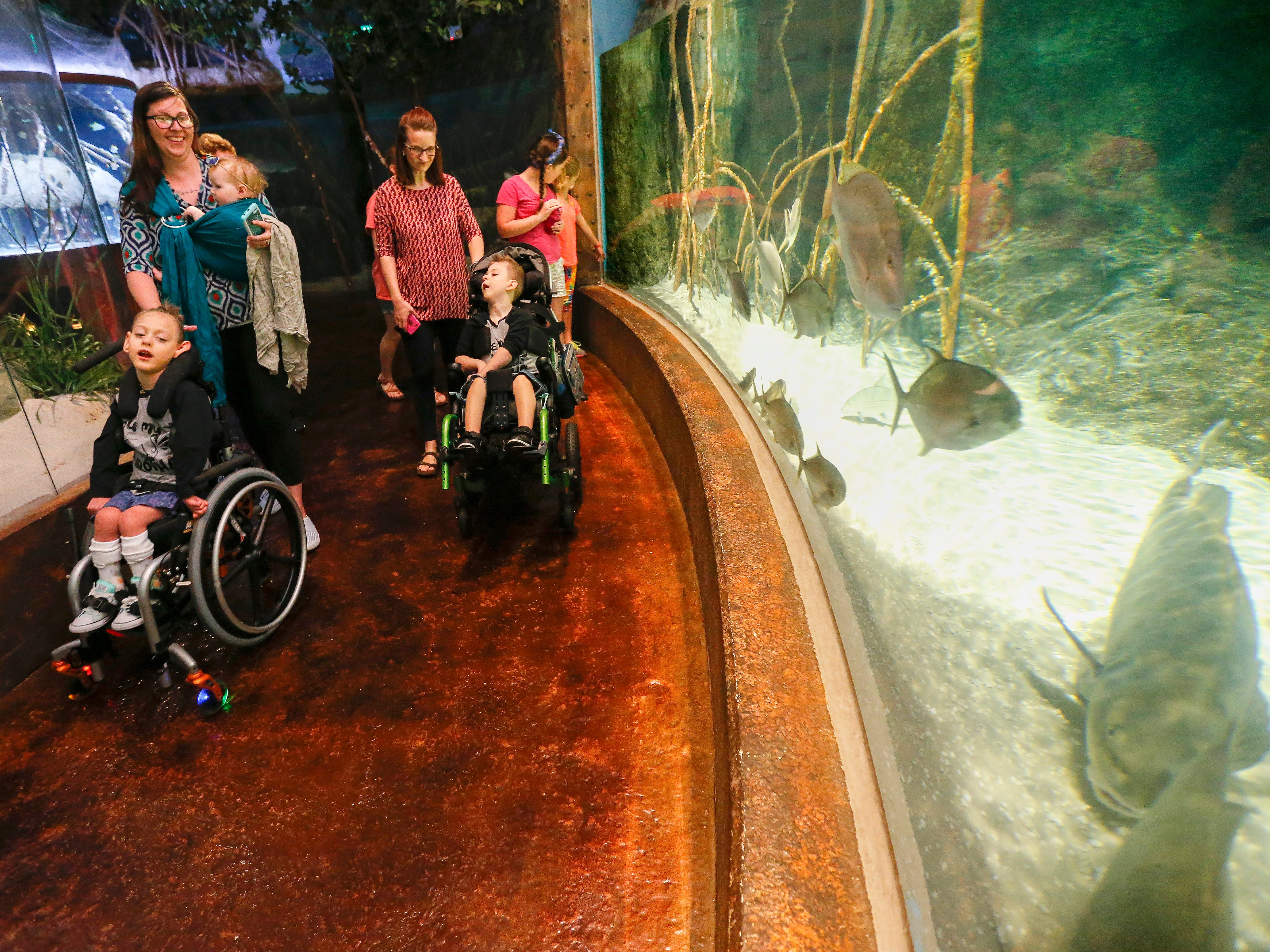 Ashley Markum pushes Ayden Markum, 5, while holding her daughter Letty, 7-months, while visiting the Wonder's of Wildlife Aquarium with Ayden's friend Raylan Callaway, 6, right, and his family on Wednesday, Aug. 22, 2018.