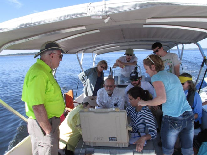 A group takes an eco-tour with Big Bend Coastal Conservation.