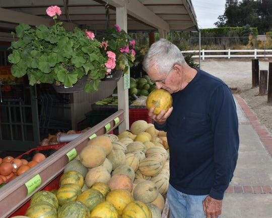 Camarillo farmer Craig Underwood checks out a melon at his Somis farm stand.