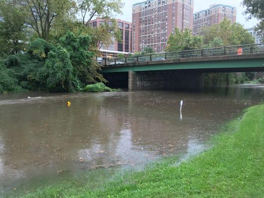Bronx River Parkway Rain