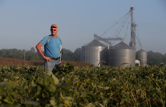 """Jack Maloney looks over one of the soybean fields on his Little Ireland Farms in Brownsburg, Ind., Wednesday, Sept. 12, 2018. Maloney, who farms about 2,000 acres in Hendricks Count, said the aid for farmers is """"a nice gesture"""" but what farmers really want is free trade, not government handouts. American farmers will soon begin getting checks from the government as part of a billion-dollar bailout to help those experiencing financial strain from President Donald Trump's trade disputes with China."""