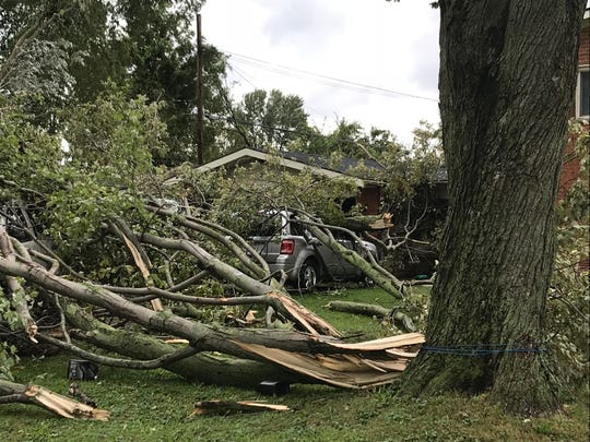 Storms uprooted three trees Tuesday, Sept. 26, at Dan Dreher's home in Gibraltar, and the trees damaged four vehicles in the driveway.