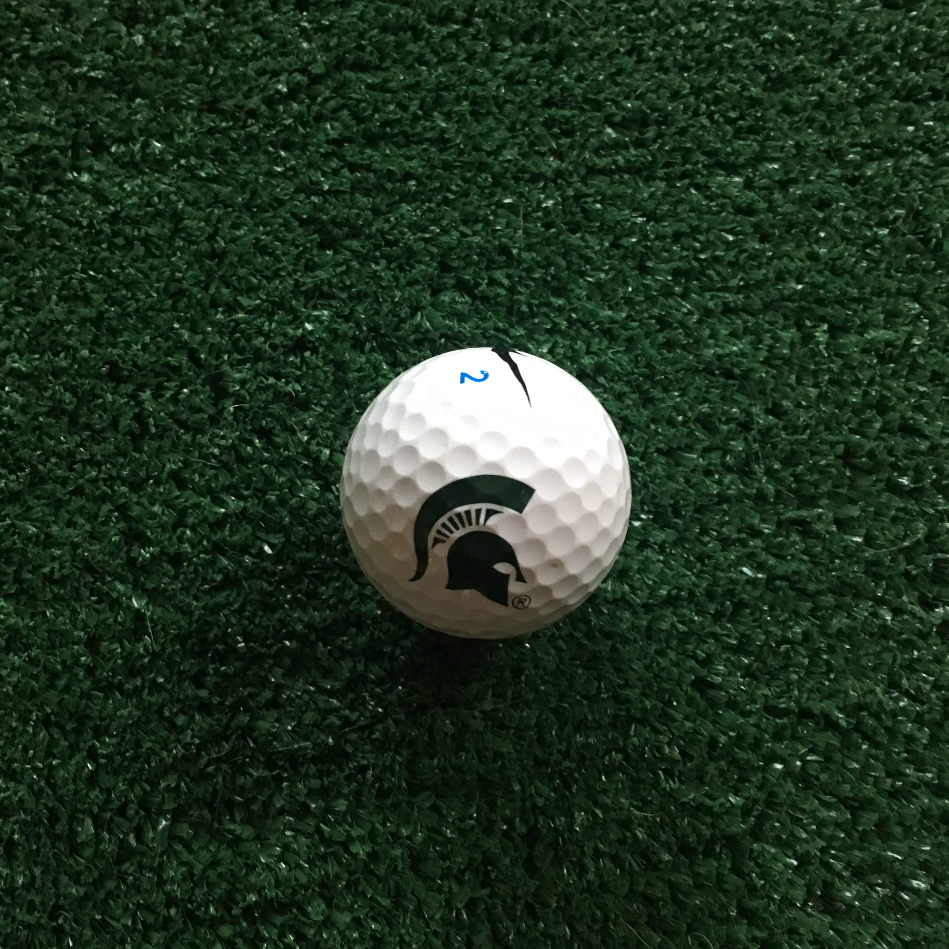 The lucky ball that Paige Radebach of Webberville used to to drain multiple 30-foot putts during the Drive, Chip and Putt competition. She'll compete in the national finals at Augusta National in April.