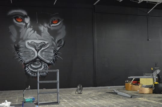 A mural of a lion is being spray painted inside Bridgewater Performance in Franklin.