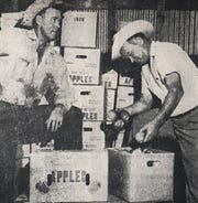 The Tully brothers prepare their apples for market.