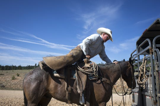 Justun Jones mounts Blueberry before moving cattle in the south summer pasture, July 6, 2018, at North Rim Ranches on the Kaibab National Forest.