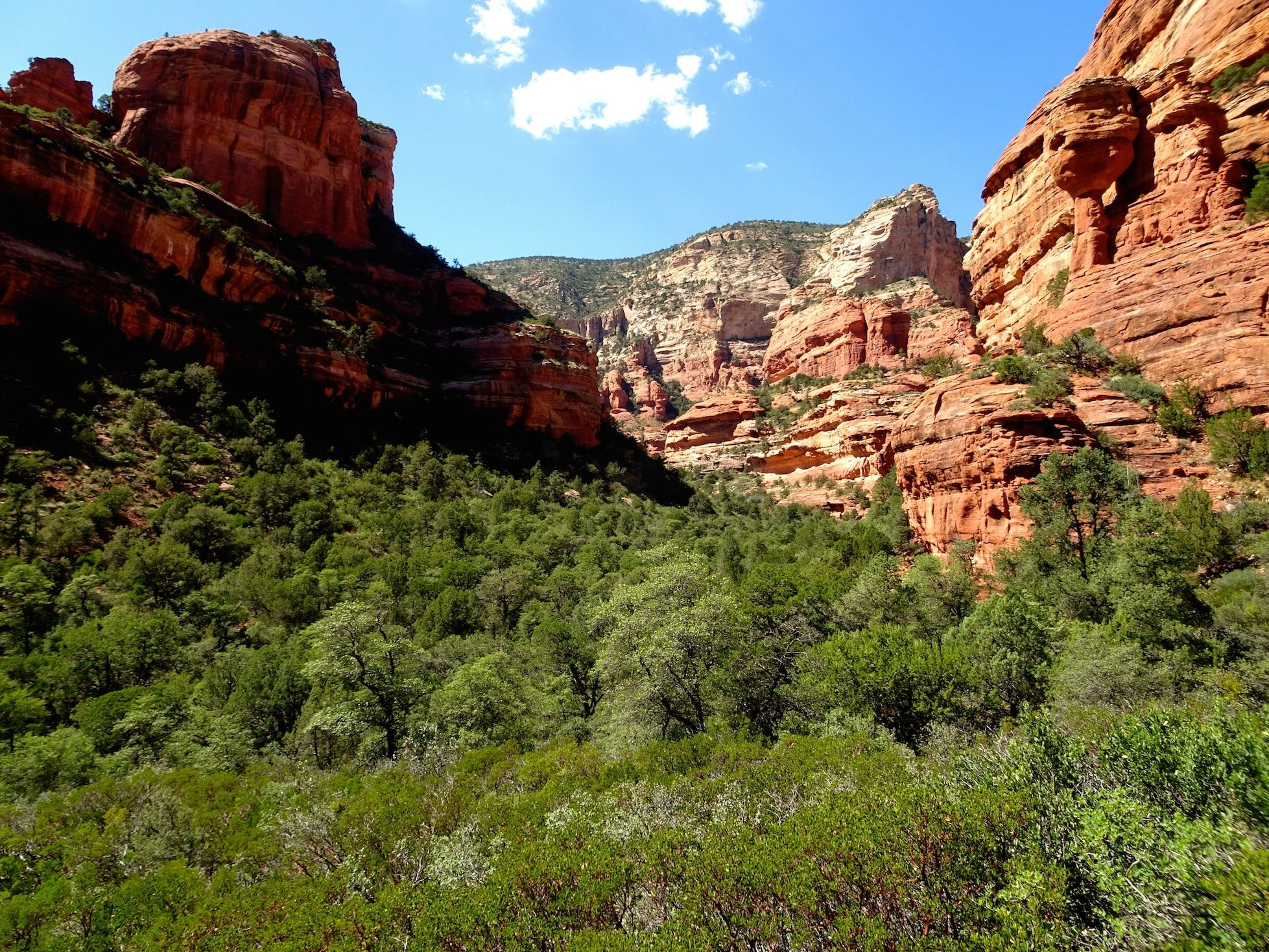 The Fay Canyon Trail is one of Sedona's easiest hikes. It meanders through shady woods into a box canyon.